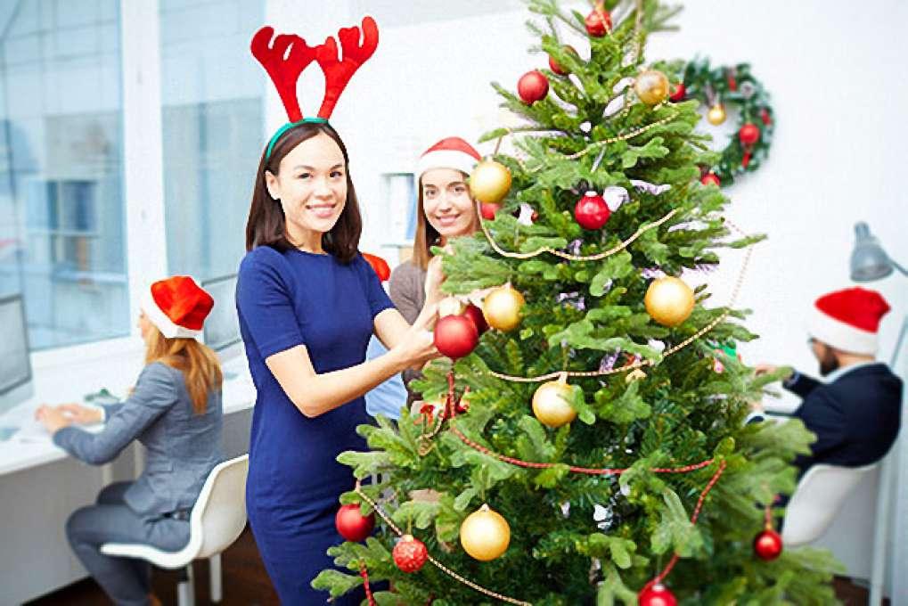 Ndr Weihnachtsbaum.Dittfach Edeltannenhof Isernhagen Service Für Geschäftskunden